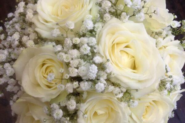 web-photo-24-10-2016-12-44-55wedding