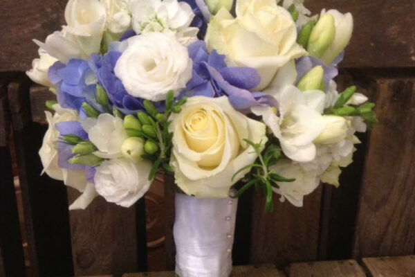 web-photo-24-10-2016-13-10-56wedding